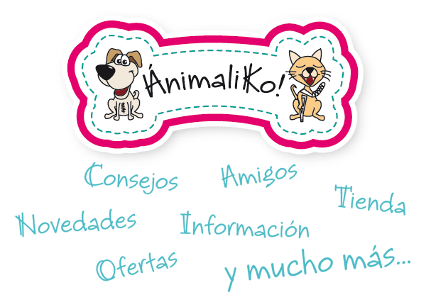 prendas protectoras veterinarias ppv antibacteriana postqurúrgica posoperatorias postoperatorias mascotas alternativa al collar isabelino