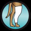 escayola férula posoperatorios postoperatorios mascotas