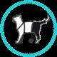 pantalón prenda protectora veterinaria PPV para gato