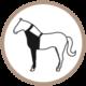 pata delantera prenda protectora veterinaria PPV para caballo