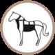 ic-peto-caballo-bl-200x200