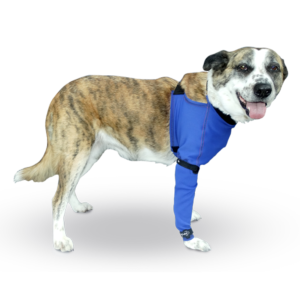 Prenda Protectora Veterinaria PPV antibacteriana ideada para cubrir y proteger la pata delantera, pecho y parte del abdomen de la mascota. Heridas, lesiones cutáneas, posoperatorio, apósitos...