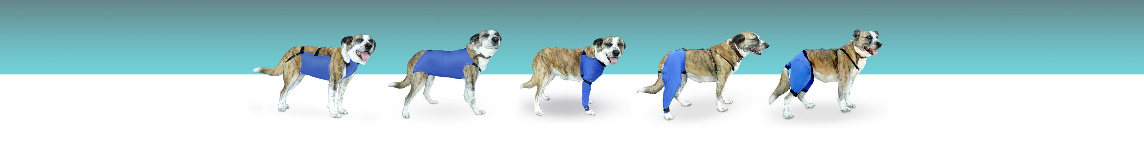 prendas protectoras veterinarias ppv antibacteriana mascotas