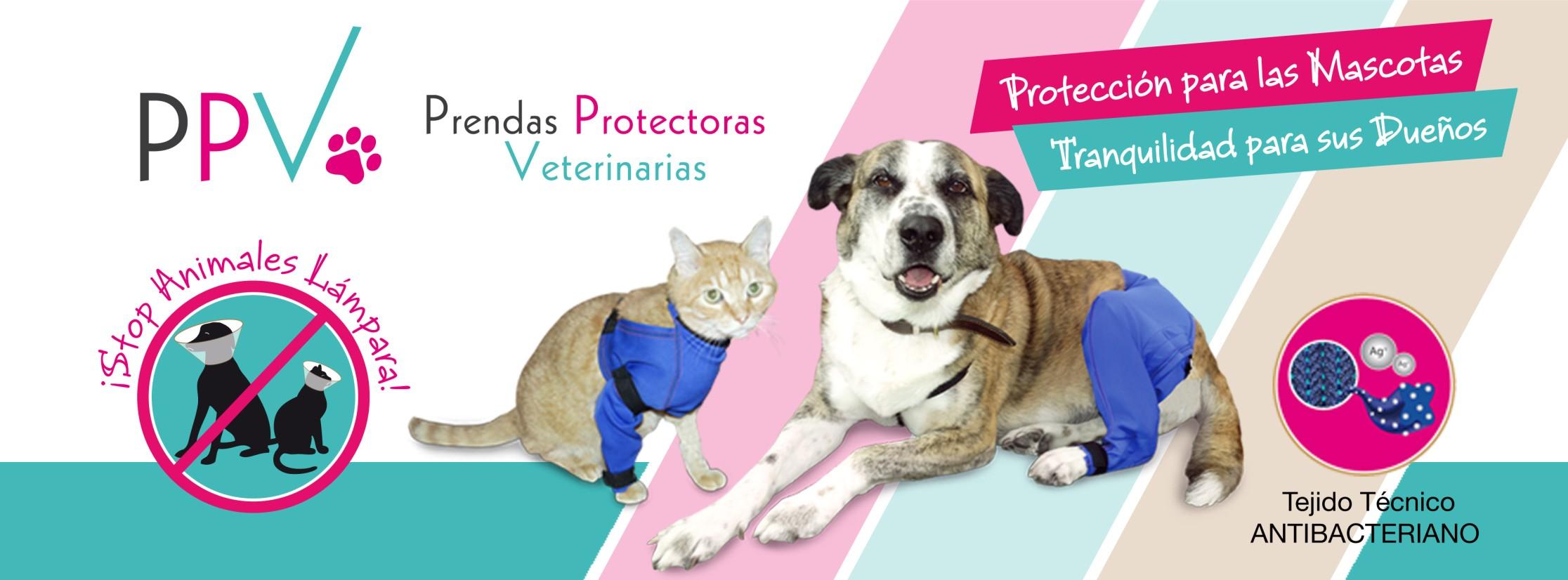 Alternativa collar isabelino para la protección de mascotas posoperatorios postoperatorios posquitúrgico