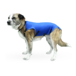 Prenda Protectora Veterinaria PPV antibacteriana ideada para cubrir y proteger la espalda y costados de la mascota. Heridas, lesiones cutáneas, posoperatorio, apósitos...